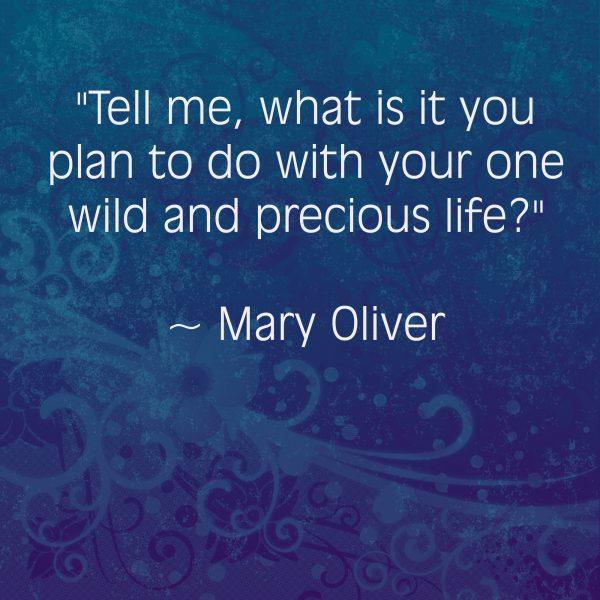 June 3 - Wild and Precious Life